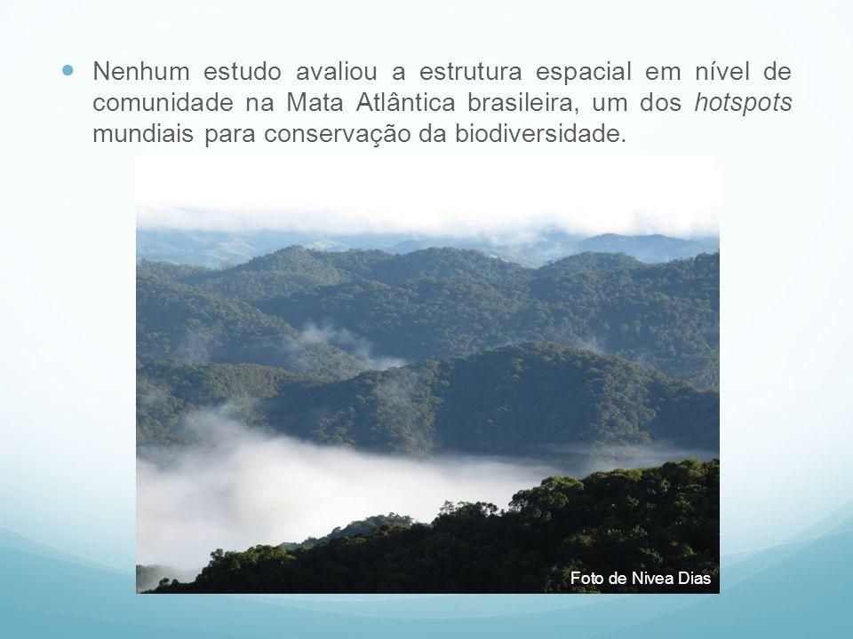 Nenhum estudo avaliou a estrutura espacial em nível de comunidade na Mata Atlântica brasileira, um dos hotspots mundiais para conservação da biodivers