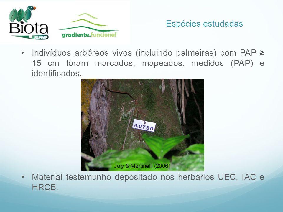 Indivíduos arbóreos vivos (incluindo palmeiras) com PAP 15 cm foram marcados, mapeados, medidos (PAP) e identificados. Material testemunho depositado