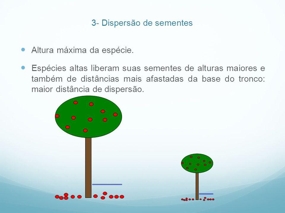Altura máxima da espécie. Espécies altas liberam suas sementes de alturas maiores e também de distâncias mais afastadas da base do tronco: maior distâ