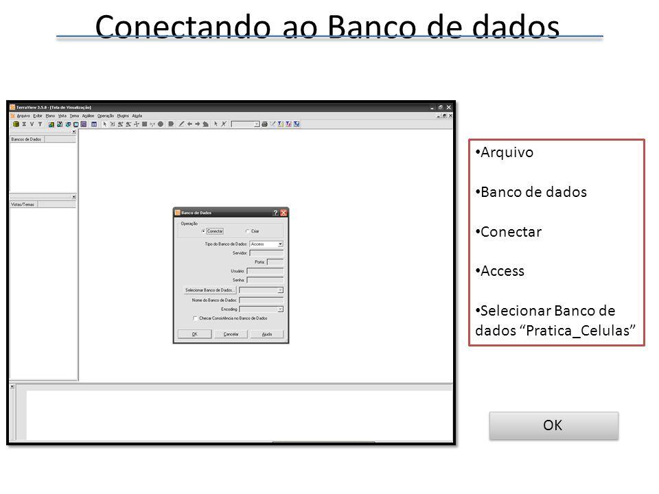 Conectando ao Banco de dados Arquivo Banco de dados Conectar Access Selecionar Banco de dados Pratica_Celulas OK