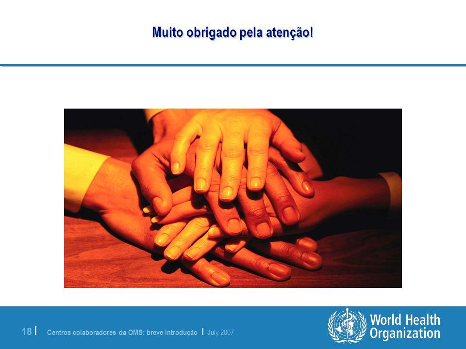 Centros colaboradores da OMS: breve introdução | July 2007 18 | Muito obrigado pela atenção!