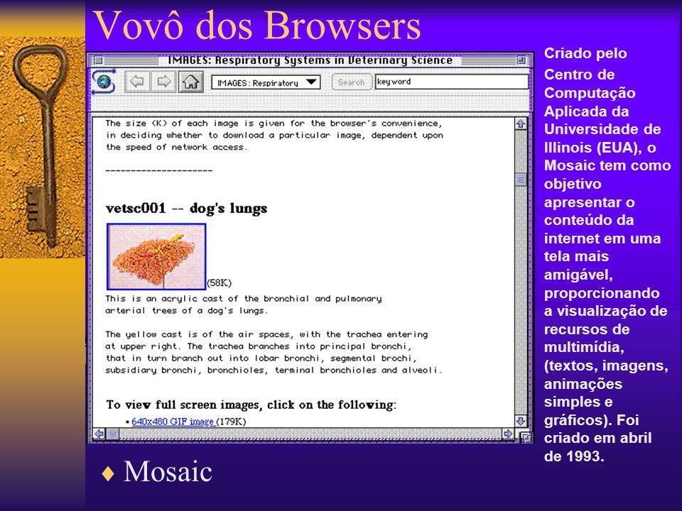 Vovô dos Browsers Mosaic Criado pelo Centro de Computação Aplicada da Universidade de Illinois (EUA), o Mosaic tem como objetivo apresentar o conteúdo da internet em uma tela mais amigável, proporcionando a visualização de recursos de multimídia, (textos, imagens, animações simples e gráficos).