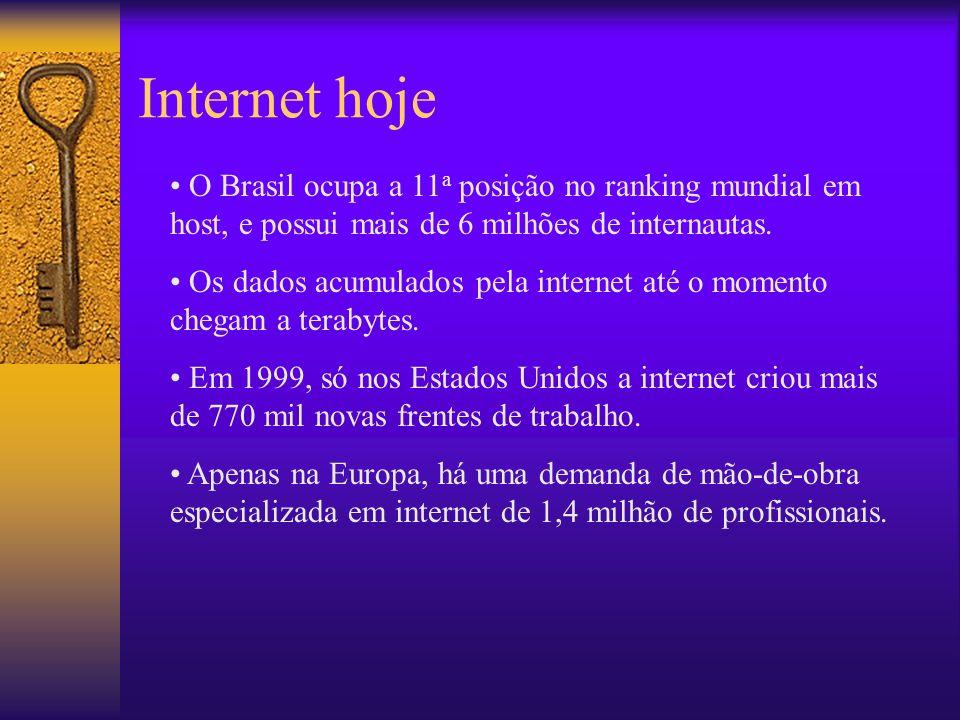 Internet hoje O Brasil ocupa a 11 a posição no ranking mundial em host, e possui mais de 6 milhões de internautas.