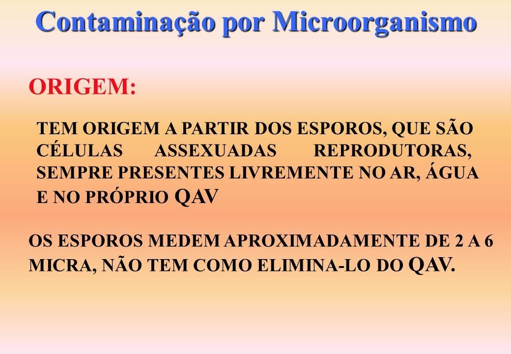 Contaminação por Microorganismo FORMAÇÃO: ALIMENTAÇÃO: ESTE TIPO DE CONTAMINAÇÃO OCORRE, PELA FORMAÇÃO DE COLÔNIA DE ORGANISMOS VIVOS (FUNGOS E BACTÉR