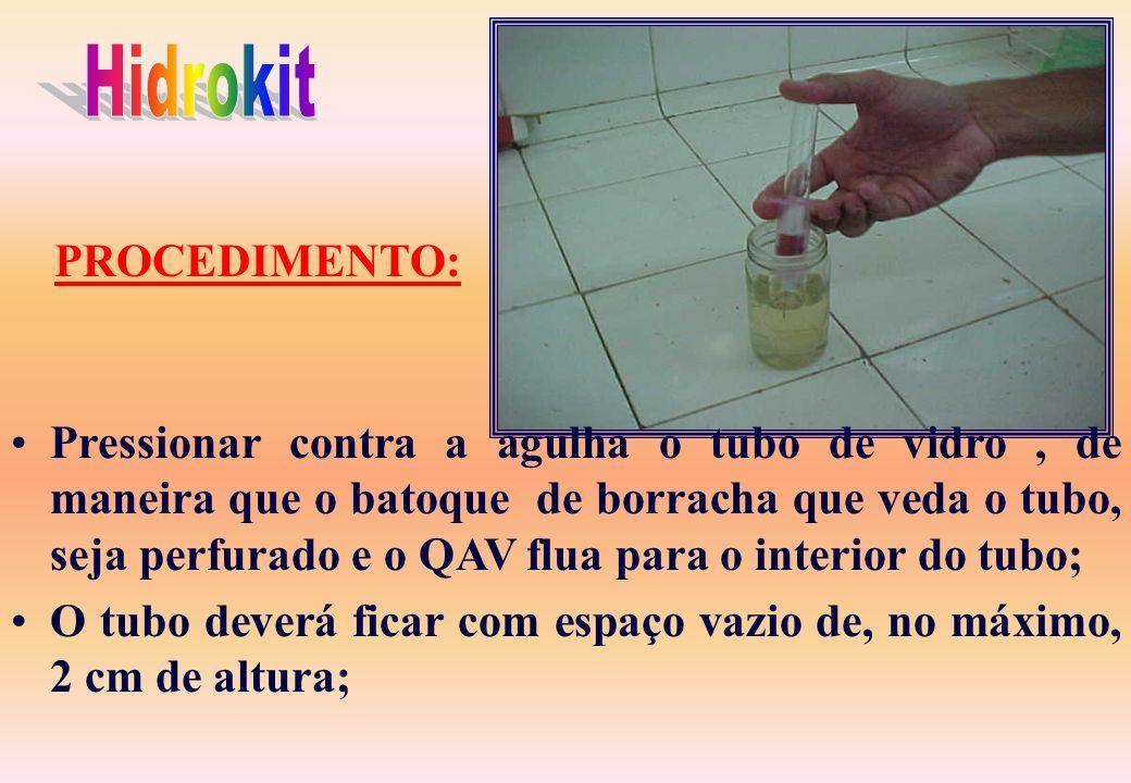 Encher o frasco de vidro no mínimo até a metade com QAV a ser testado; Colocar em seu interior o suporte com a agulha de tal forma que o mesmo fique m