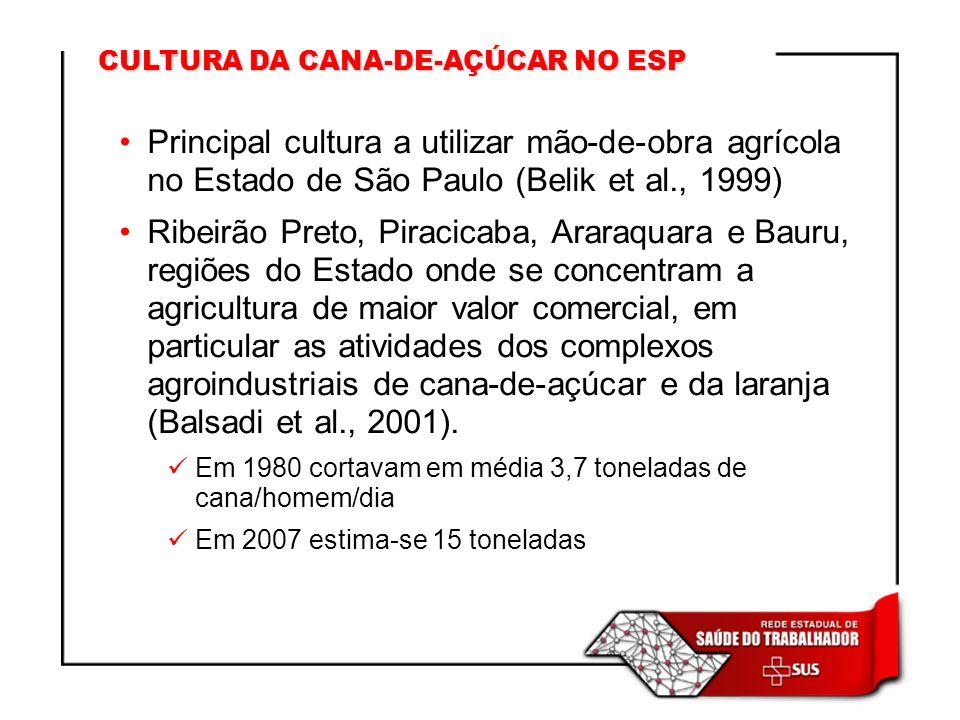 CULTURA DA CANA-DE-AÇÚCAR NO ESP Principal cultura a utilizar mão-de-obra agrícola no Estado de São Paulo (Belik et al., 1999) Ribeirão Preto, Piracic