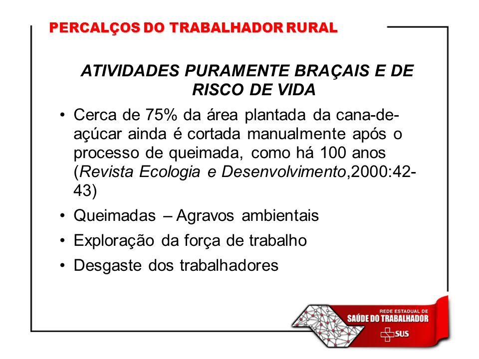PERCALÇOS DO TRABALHADOR RURAL ATIVIDADES PURAMENTE BRAÇAIS E DE RISCO DE VIDA Cerca de 75% da área plantada da cana-de- açúcar ainda é cortada manual