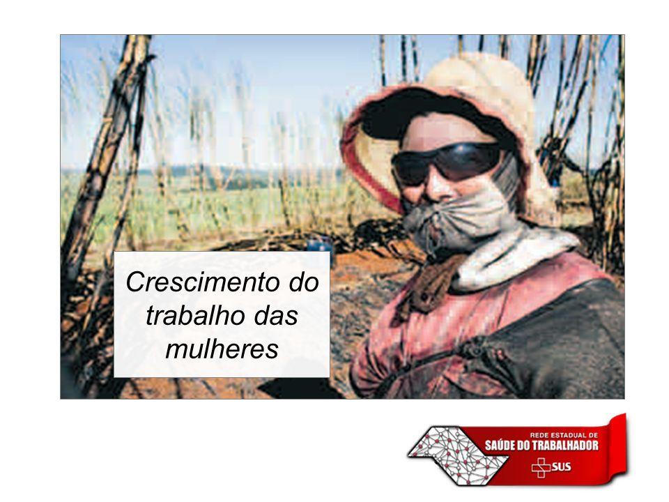 Norteado pelo princípio do trabalho decente da OIT, pelos princípios e diretrizes da Política Nacional de Segurança e Saúde do Trabalhador, pelos princípios e diretrizes correlatos de defesa do meio ambiente, além das diretrizes correspondentes em vigor no Estado de São Paulo.
