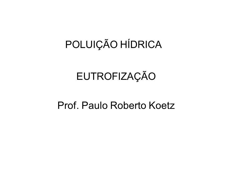 POLUIÇÃO HÍDRICA EUTROFIZAÇÃO Prof. Paulo Roberto Koetz
