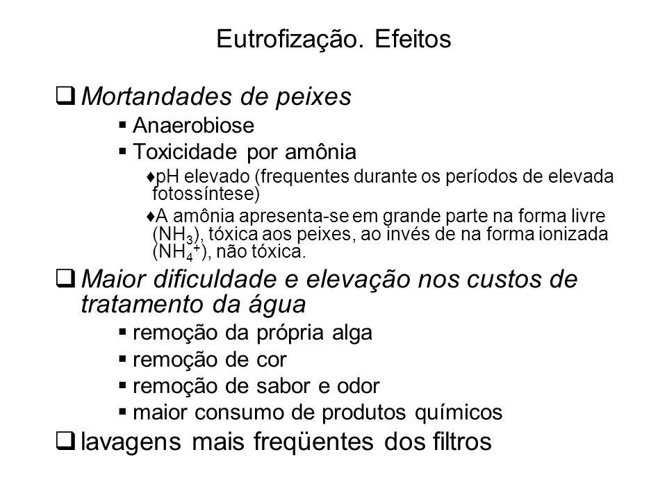 Eutrofização.