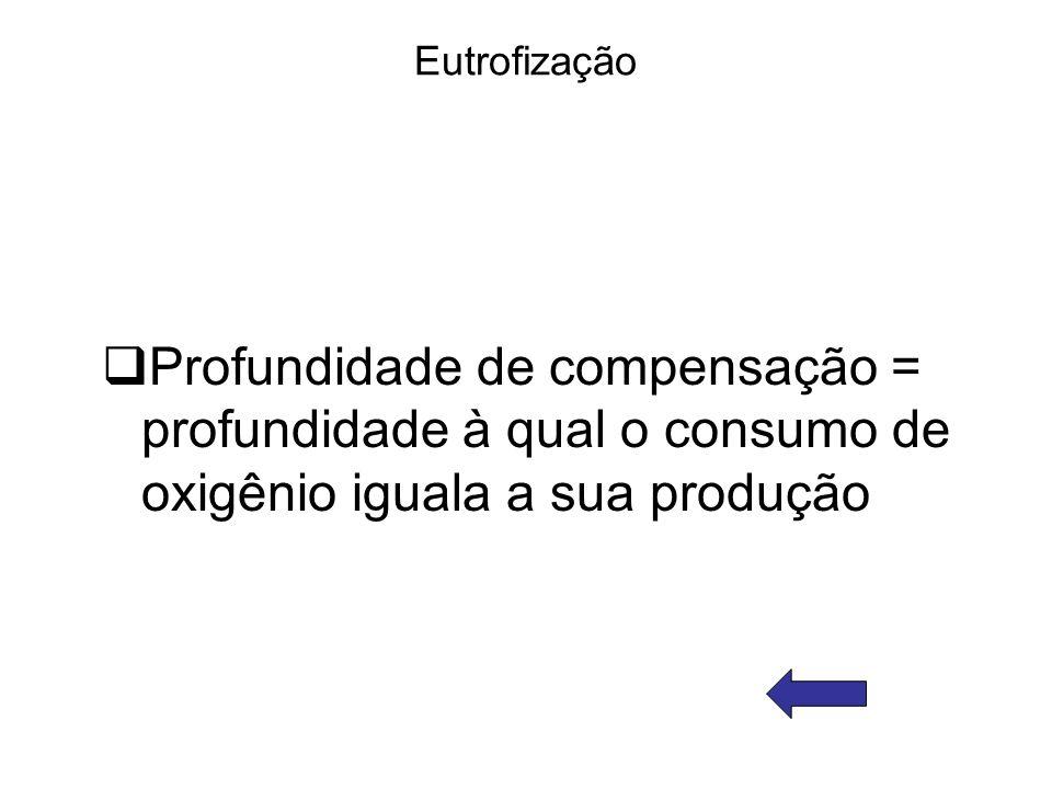 Eutrofização Profundidade de compensação = profundidade à qual o consumo de oxigênio iguala a sua produção