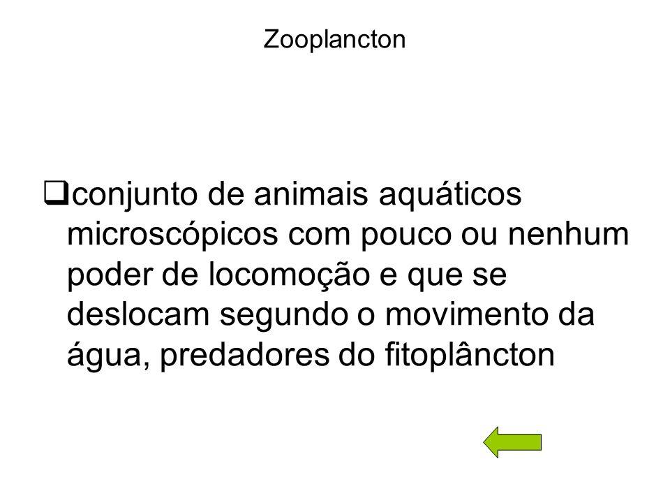 Zooplancton conjunto de animais aquáticos microscópicos com pouco ou nenhum poder de locomoção e que se deslocam segundo o movimento da água, predadores do fitoplâncton