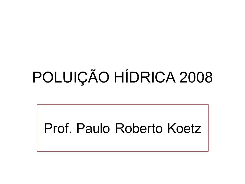 POLUIÇÃO HÍDRICA 2008 Prof. Paulo Roberto Koetz