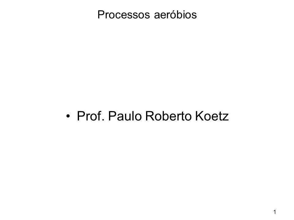1 Processos aeróbios Prof. Paulo Roberto Koetz