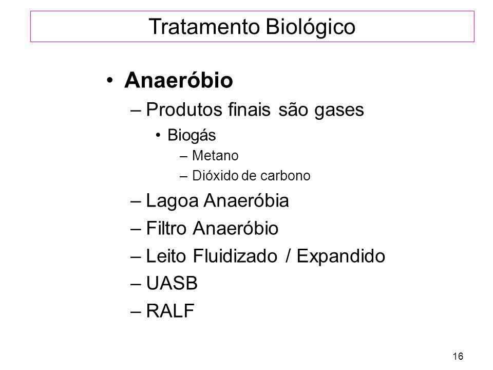 16 Tratamento Biológico Anaeróbio –Produtos finais são gases Biogás –Metano –Dióxido de carbono –Lagoa Anaeróbia –Filtro Anaeróbio –Leito Fluidizado /