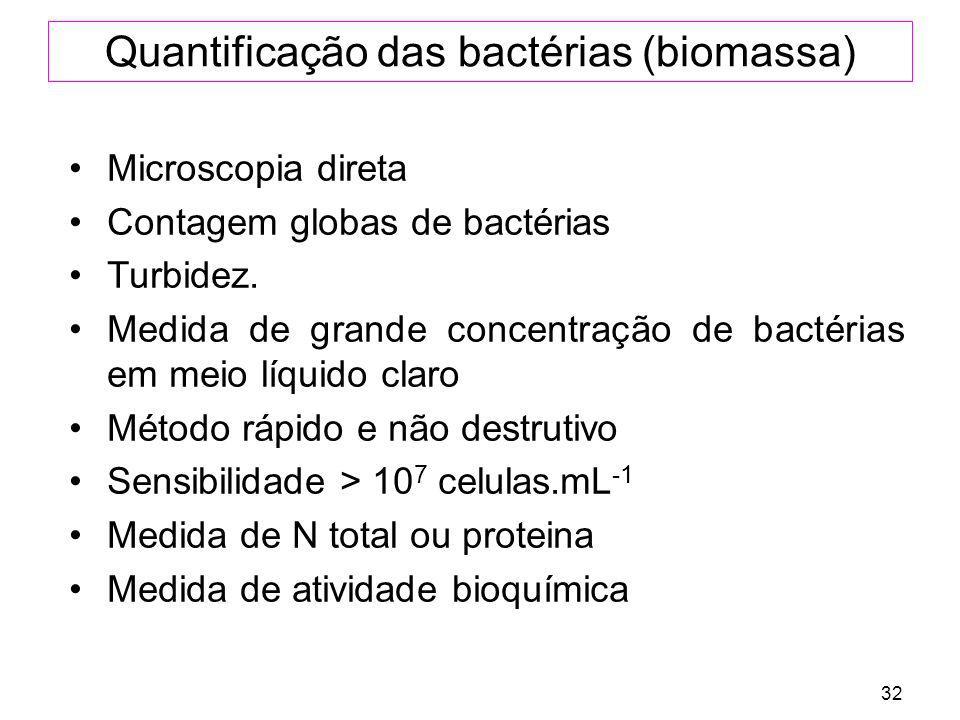 32 Quantificação das bactérias (biomassa) Microscopia direta Contagem globas de bactérias Turbidez. Medida de grande concentração de bactérias em meio