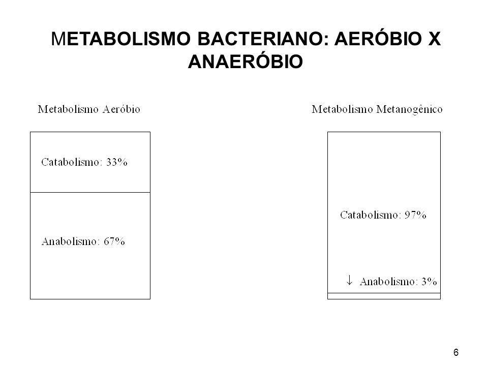 6 METABOLISMO BACTERIANO: AERÓBIO X ANAERÓBIO