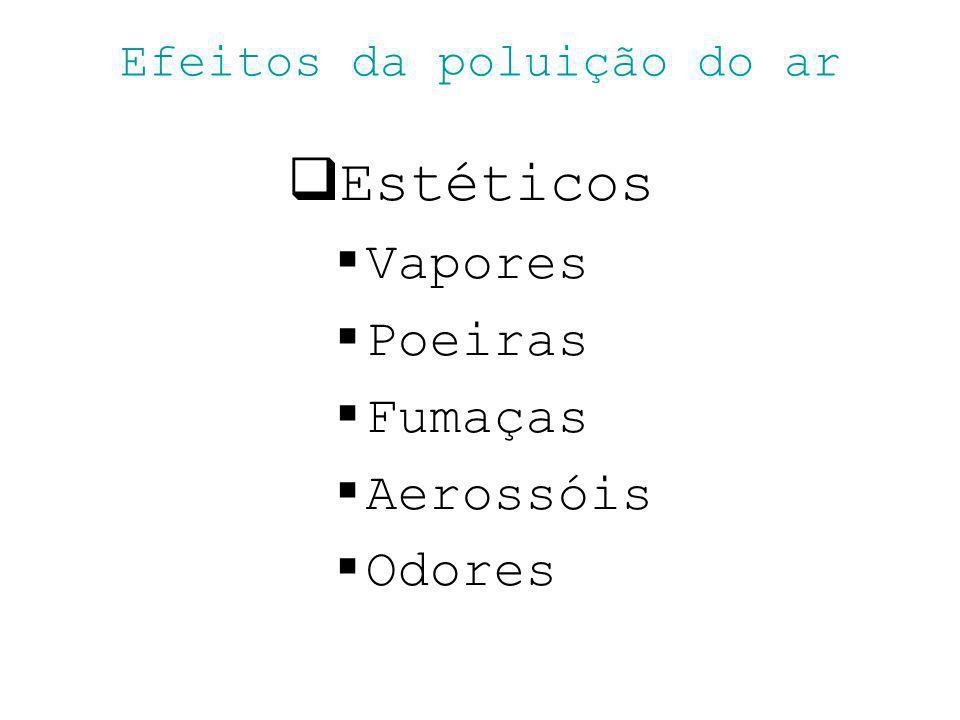 Efeitos da poluição do ar Estéticos Vapores Poeiras Fumaças Aerossóis Odores