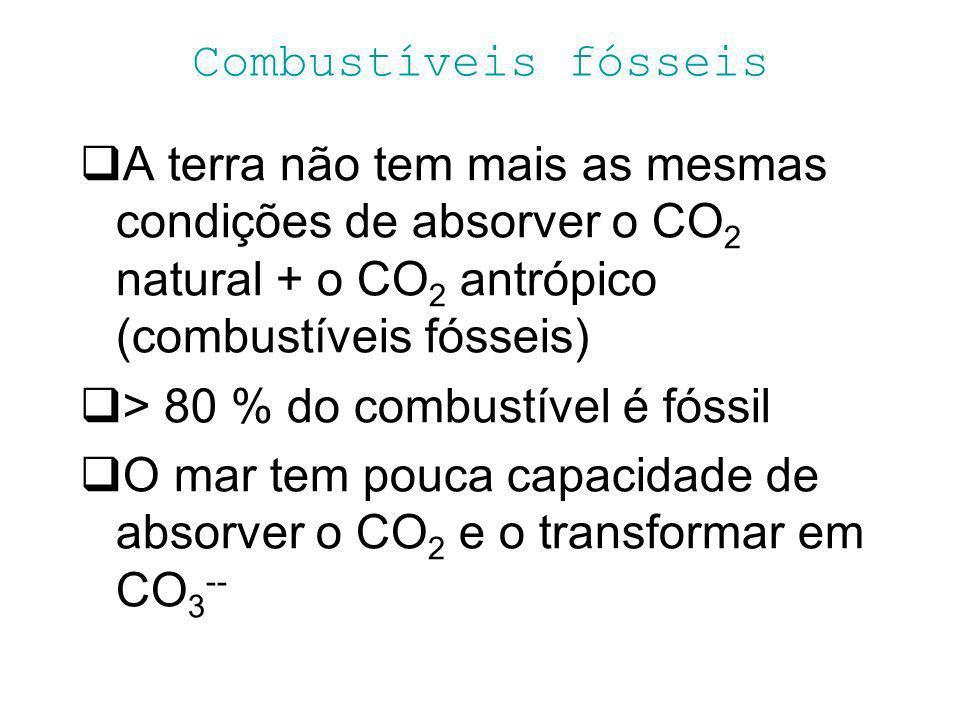 Combustíveis fósseis A terra não tem mais as mesmas condições de absorver o CO 2 natural + o CO 2 antrópico (combustíveis fósseis) > 80 % do combustív