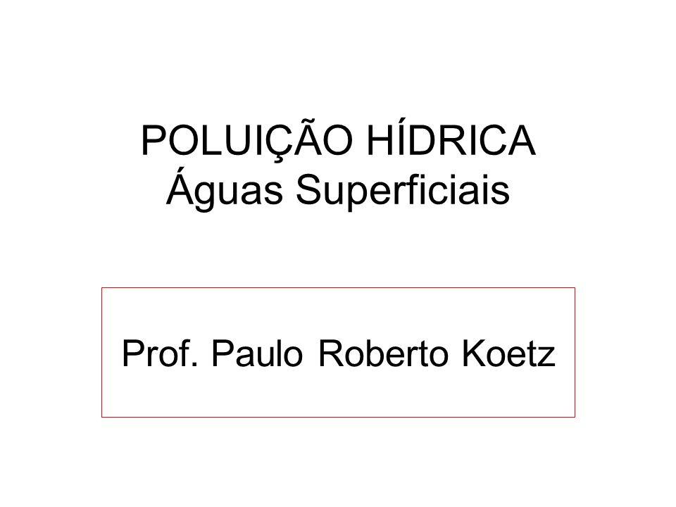 POLUIÇÃO HÍDRICA Águas Superficiais Prof. Paulo Roberto Koetz