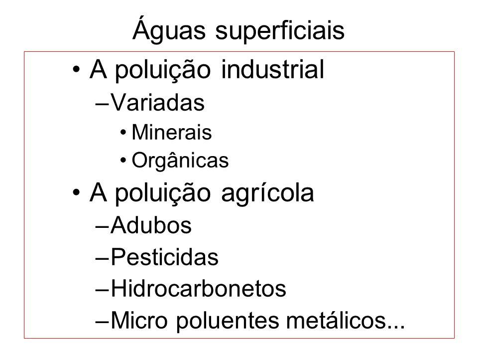 Águas superficiais A poluição industrial –Variadas Minerais Orgânicas A poluição agrícola –Adubos –Pesticidas –Hidrocarbonetos –Micro poluentes metáli