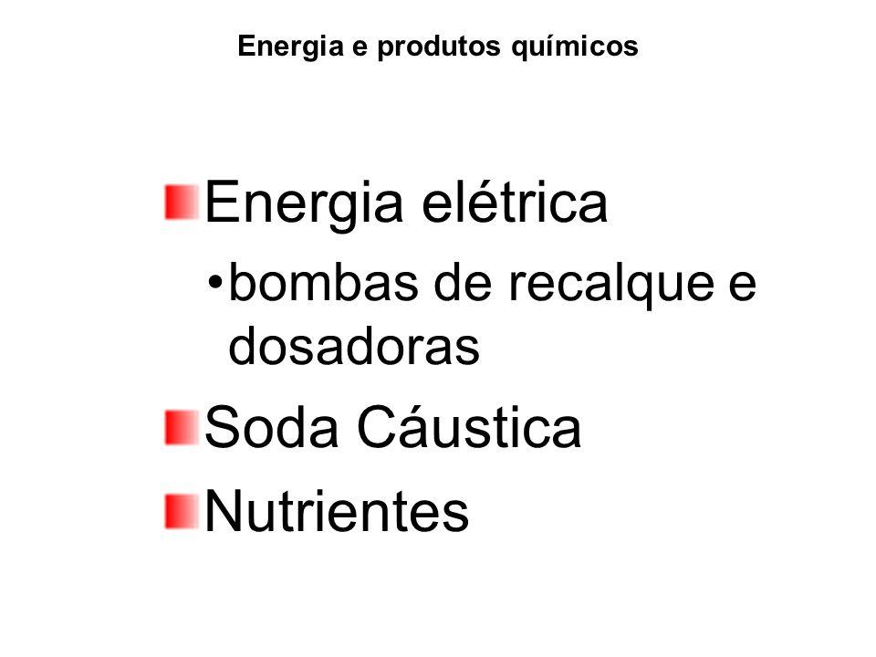 Energia e produtos químicos Energia elétrica bombas de recalque e dosadoras Soda Cáustica Nutrientes