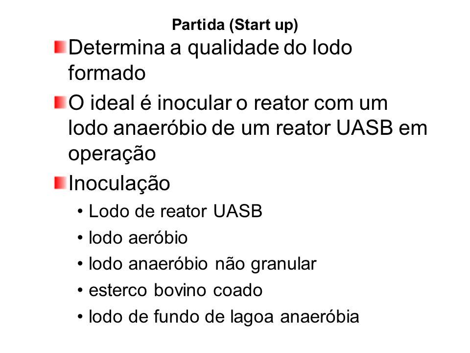 Partida (Start up) Determina a qualidade do lodo formado O ideal é inocular o reator com um lodo anaeróbio de um reator UASB em operação Inoculação Lo