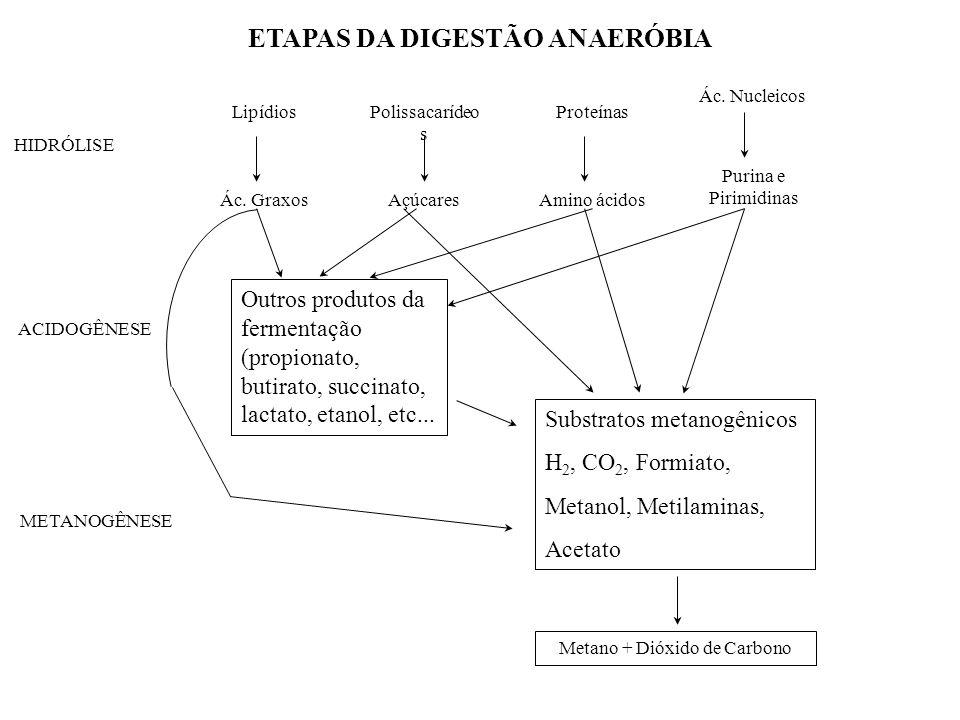 Lipídios Ác. Graxos Polissacarídeo s Açúcares Proteínas Amino ácidos Ác. Nucleicos Purina e Pirimidinas HIDRÓLISE ACIDOGÊNESE METANOGÊNESE Metano + Di