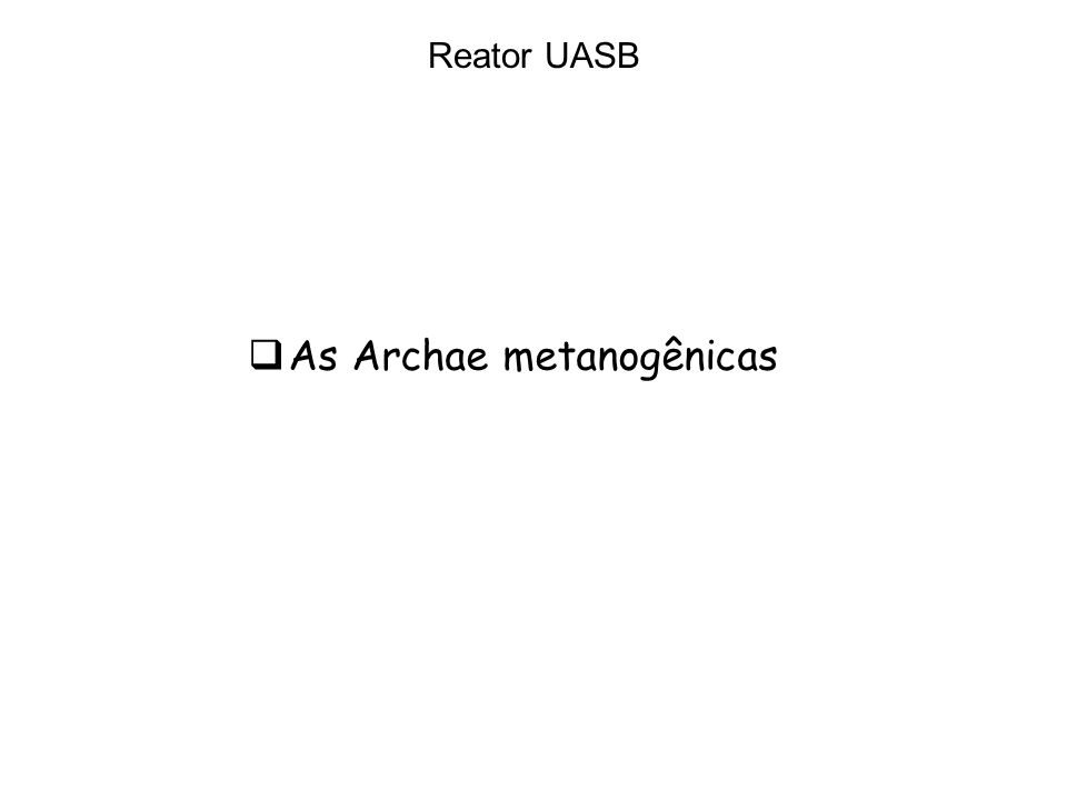Reator UASB As Archae metanogênicas