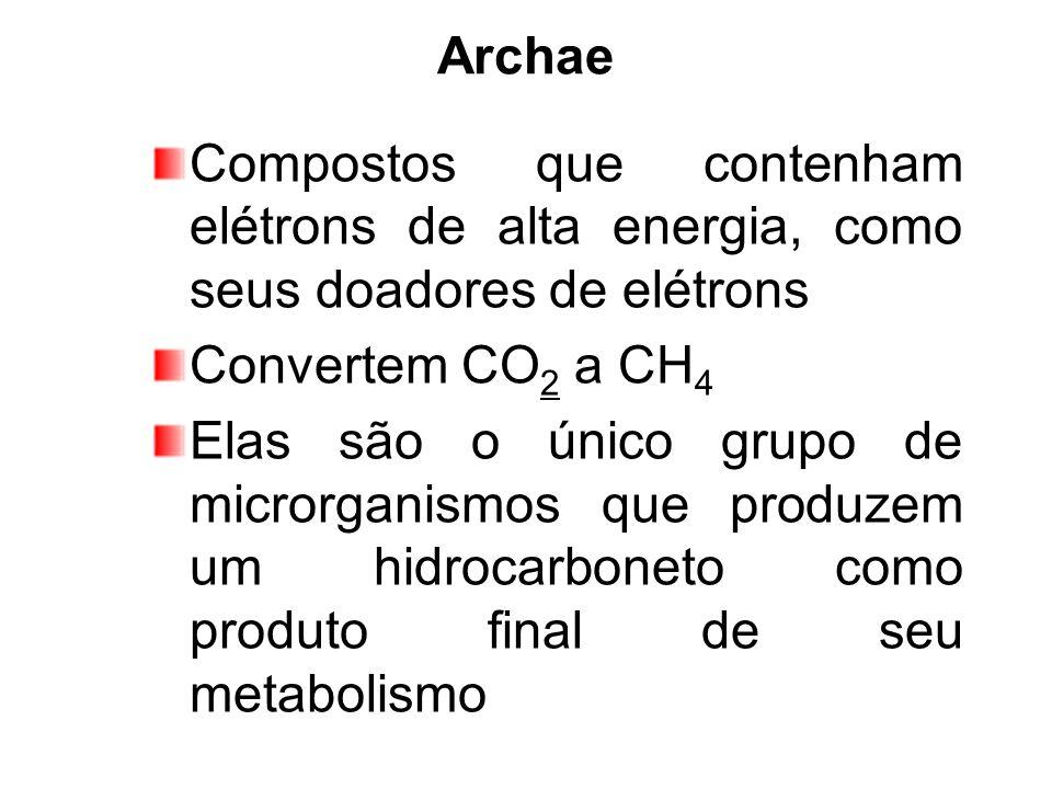 Archae Compostos que contenham elétrons de alta energia, como seus doadores de elétrons Convertem CO 2 a CH 4 Elas são o único grupo de microrganismos