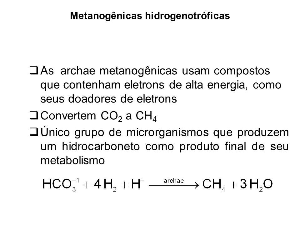 Metanogênicas hidrogenotróficas As archae metanogênicas usam compostos que contenham eletrons de alta energia, como seus doadores de eletrons Converte