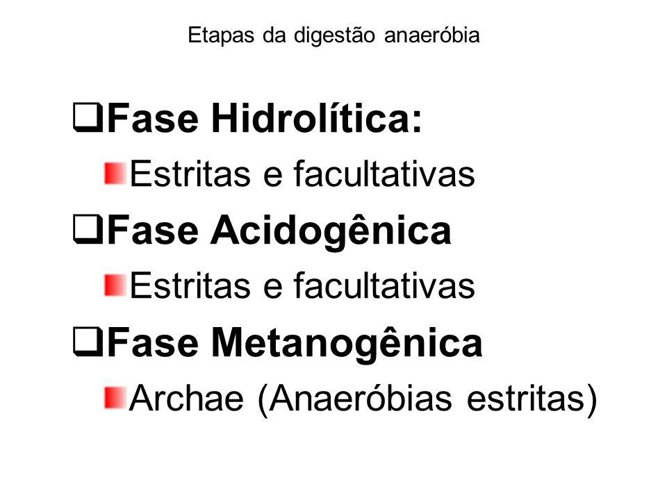 Etapas da digestão anaeróbia Fase Hidrolítica: Estritas e facultativas Fase Acidogênica Estritas e facultativas Fase Metanogênica Archae (Anaeróbias e