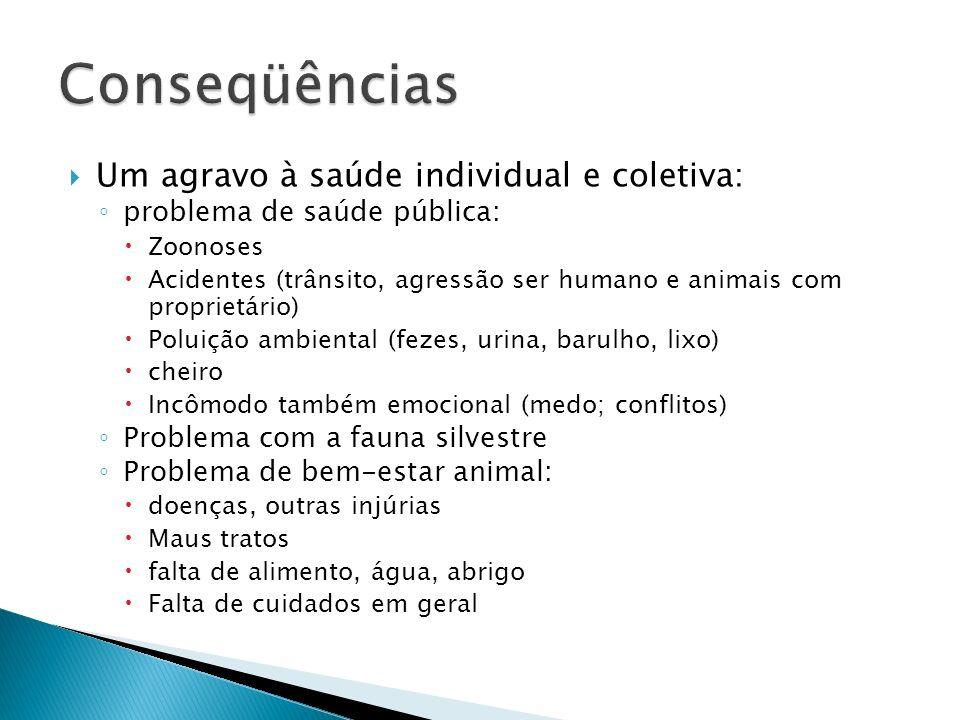 Oficina Desafios do PBEA PMSP (31 maio 2009) explosão populacional sobrecarrega instituições morte prematura dos animais abandonados agressões doenças crueldade acidentes
