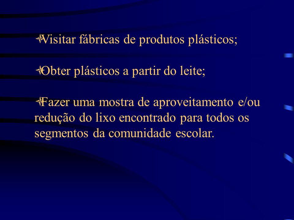 Visitar fábricas de produtos plásticos; Obter plásticos a partir do leite; Fazer uma mostra de aproveitamento e/ou redução do lixo encontrado para todos os segmentos da comunidade escolar.