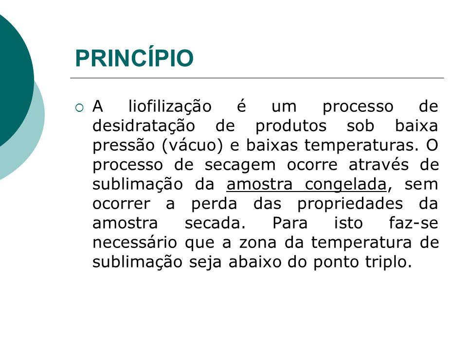 PRINCÍPIO Professor:Edgardo A. P. Prado