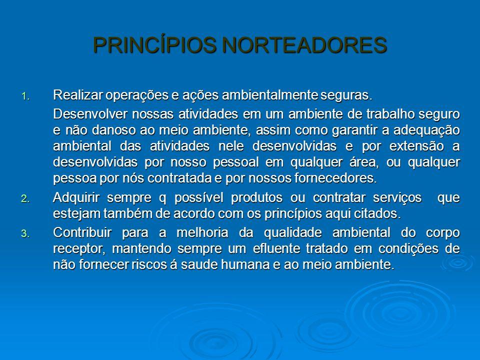 PRINCÍPIOS NORTEADORES 1. Realizar operações e ações ambientalmente seguras. Desenvolver nossas atividades em um ambiente de trabalho seguro e não dan