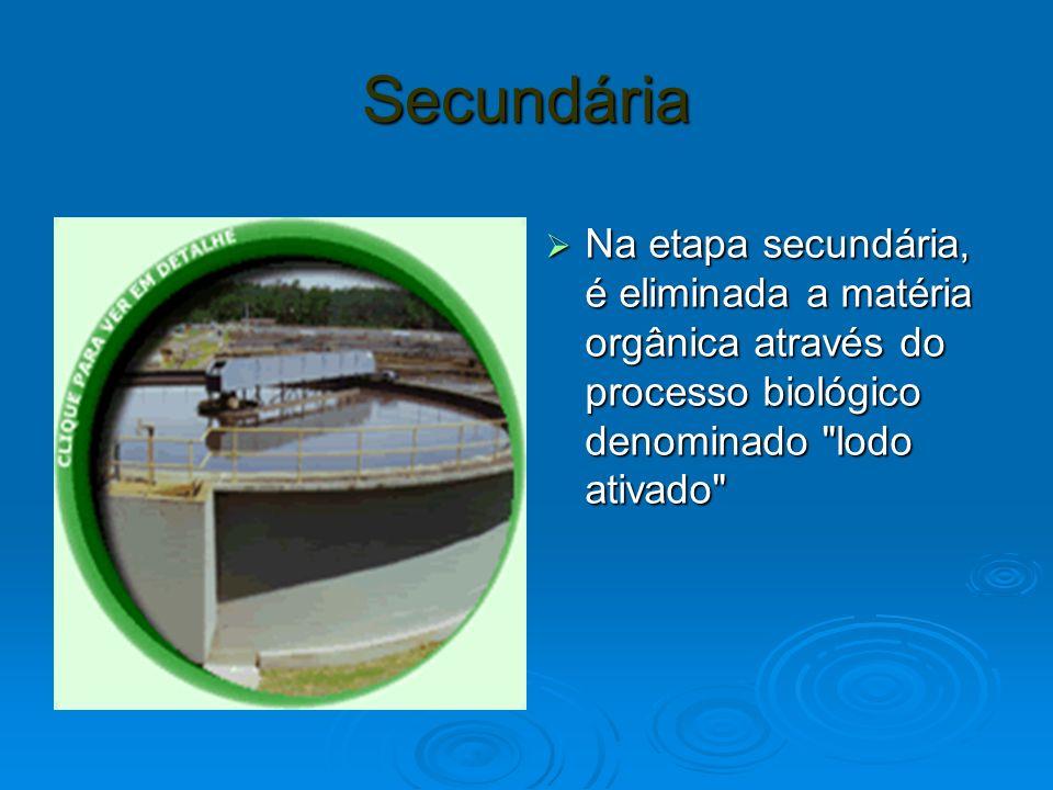 Secundária Na etapa secundária, é eliminada a matéria orgânica através do processo biológico denominado lodo ativado Na etapa secundária, é eliminada a matéria orgânica através do processo biológico denominado lodo ativado