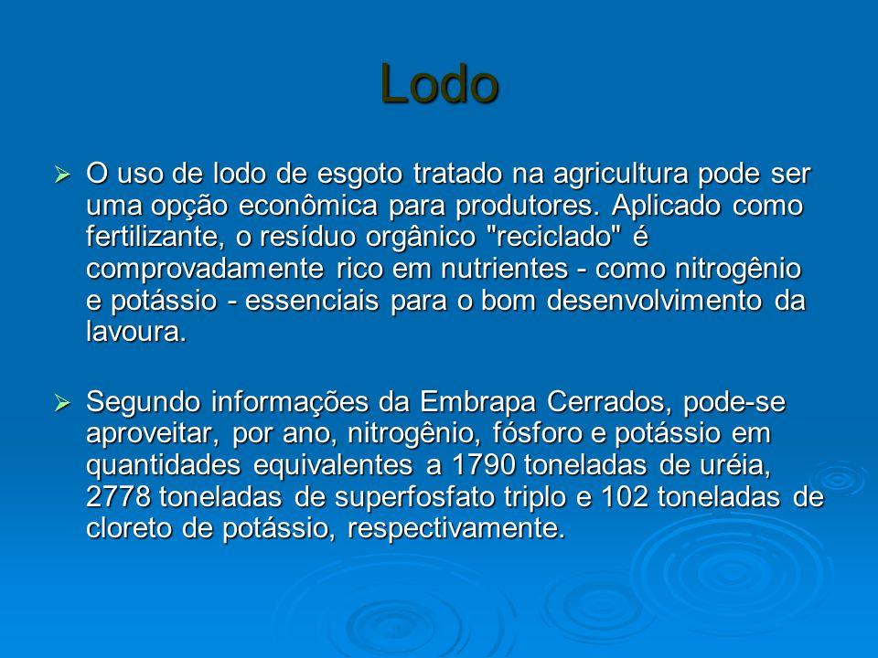 Lodo O uso de lodo de esgoto tratado na agricultura pode ser uma opção econômica para produtores.