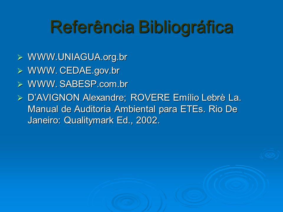 Referência Bibliográfica WWW.UNIAGUA.org.br WWW.UNIAGUA.org.br WWW. CEDAE.gov.br WWW. CEDAE.gov.br WWW. SABESP.com.br WWW. SABESP.com.br DAVIGNON Alex