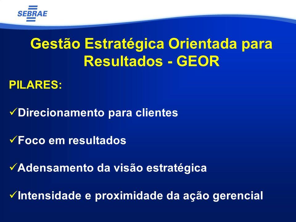 Gestão Estratégica Orientada para Resultados - GEOR PILARES: Direcionamento para clientes Foco em resultados Adensamento da visão estratégica Intensidade e proximidade da ação gerencial