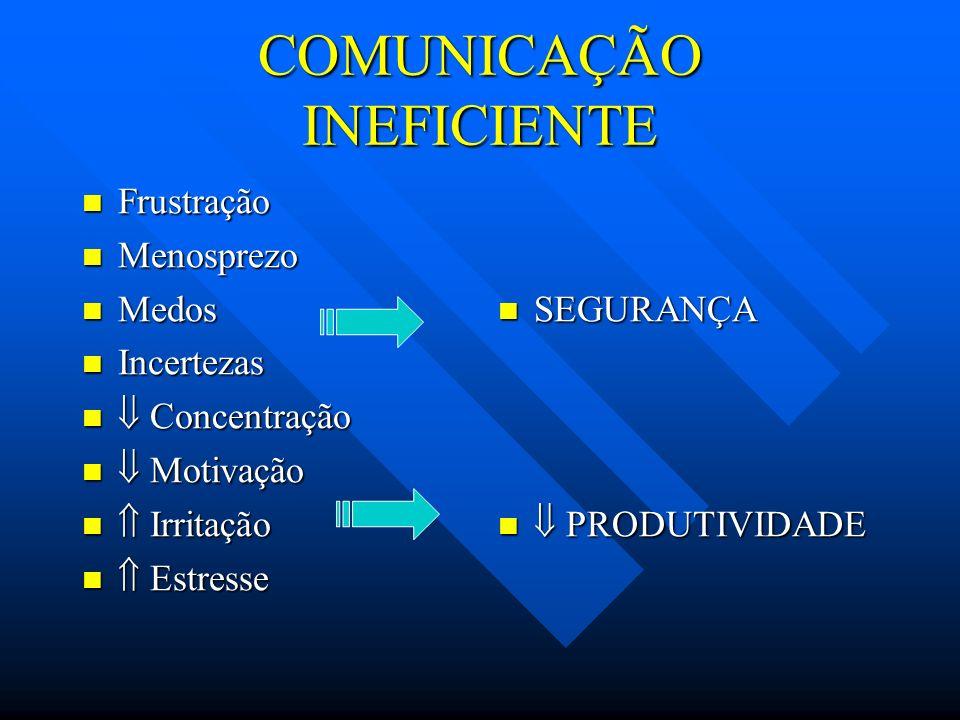 COMUNICAÇÃO INEFICIENTE Frustração Frustração Menosprezo Menosprezo Medos Medos Incertezas Incertezas Concentração Concentração Motivação Motivação Ir