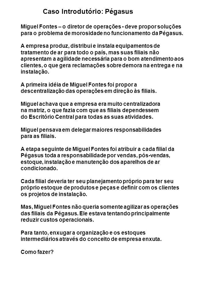 Caso Introdutório: Pégasus Miguel Fontes – o diretor de operações - deve propor soluções para o problema de morosidade no funcionamento da Pégasus.
