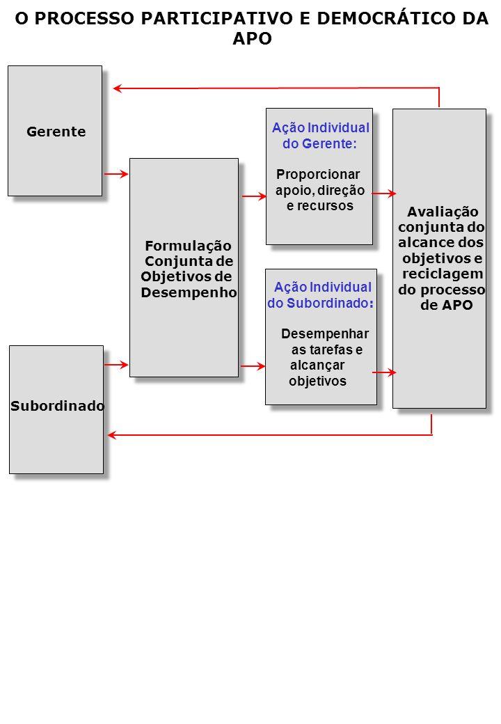 O PROCESSO PARTICIPATIVO E DEMOCRÁTICO DA APO Gerente Subordinado Formulação Conjunta de Objetivos de Desempenho Ação Individual do Gerente: Proporcionar apoio, direção e recursos Ação Individual do Subordinado : Desempenhar as tarefas e alcançar objetivos Avaliação conjunta do alcance dos objetivos e reciclagem do processo de APO