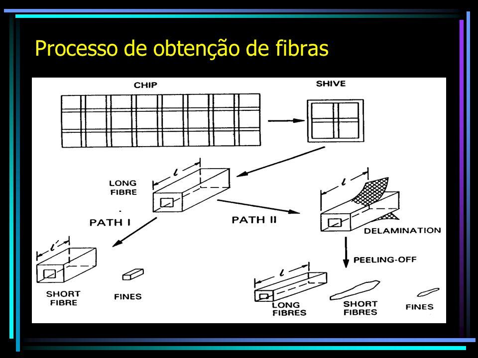 Processo de obtenção de fibras