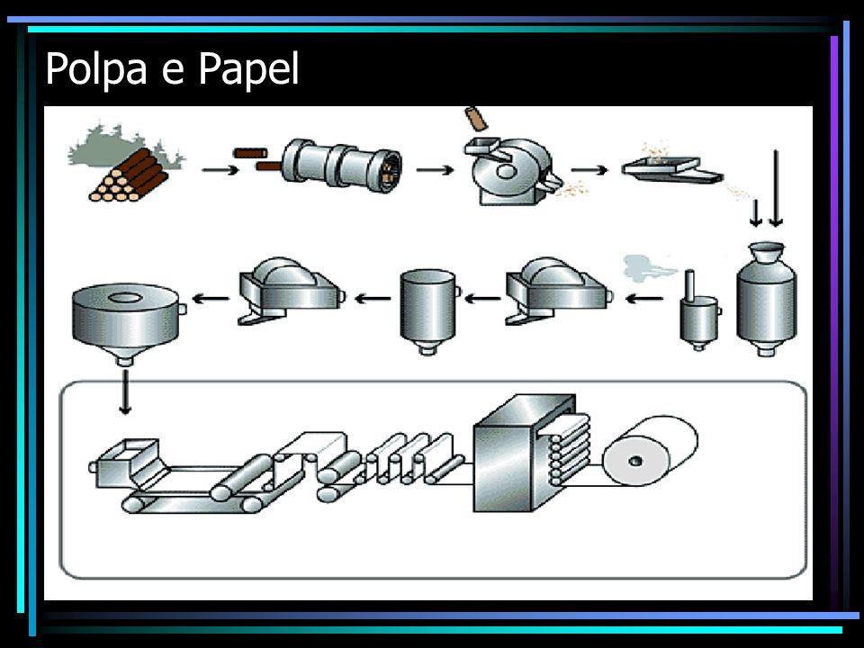 Polpa e papel 3.1.3 - Rendimento por área É definido como o peso de celulose A.S.