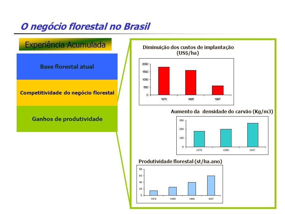O negócio florestal no Brasil Base florestal atual Competitividade do negócio florestal Ganhos de produtividade Diminuição dos custos de implantação (