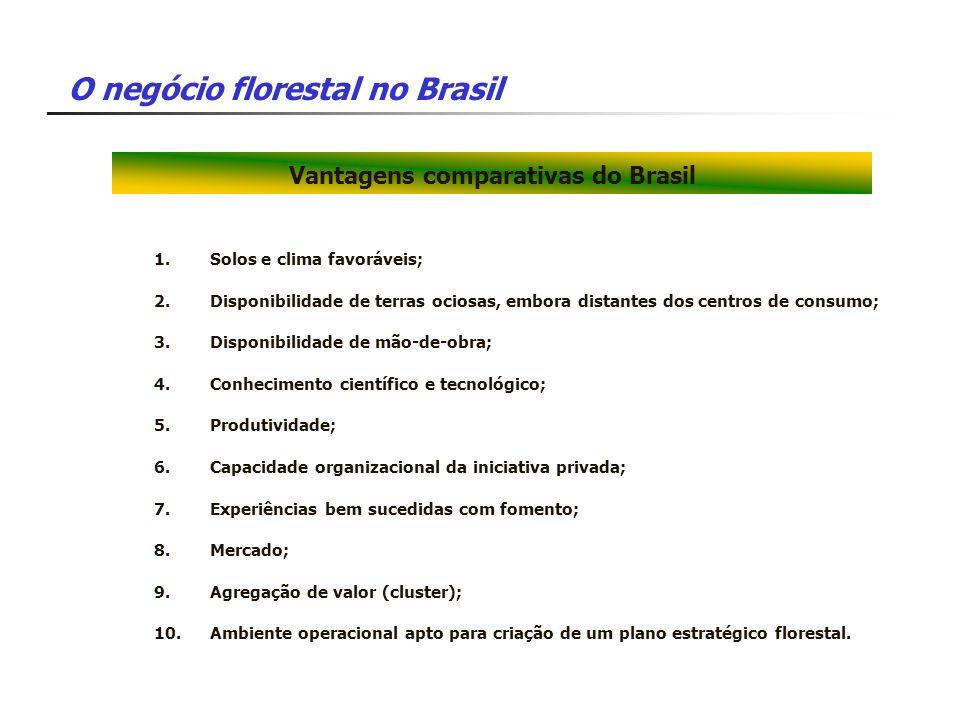Vantagens comparativas do Brasil 1.Solos e clima favoráveis; 2.Disponibilidade de terras ociosas, embora distantes dos centros de consumo; 3.Disponibi