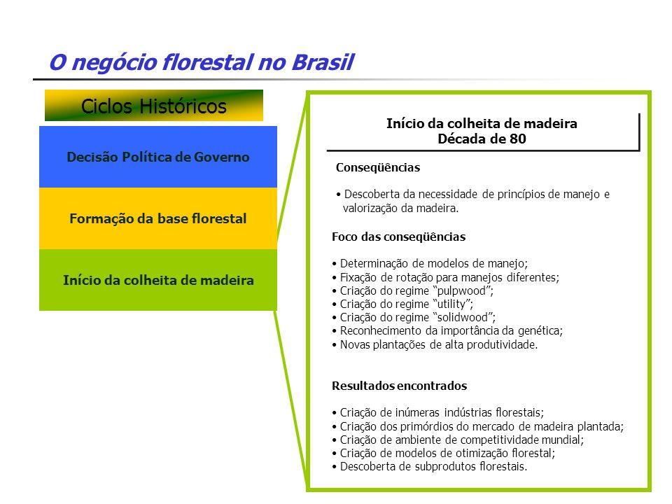 O negócio florestal no Brasil Decisão Política de Governo Início da colheita de madeira Década de 80 Início da colheita de madeira Década de 80 Foco d