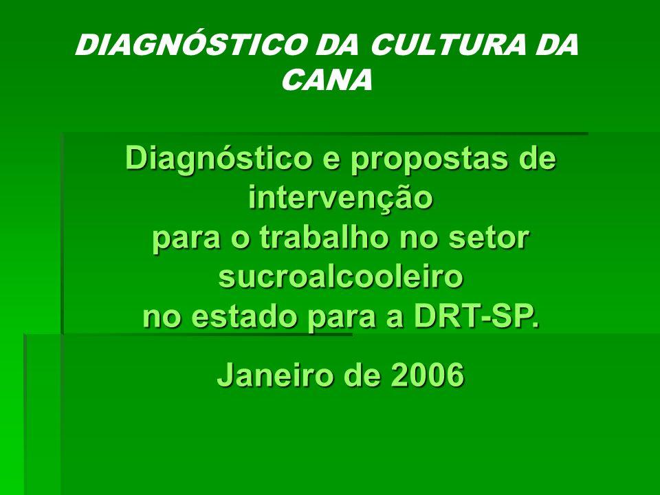 FIM... Programa Estadual Rural – DRT/SP
