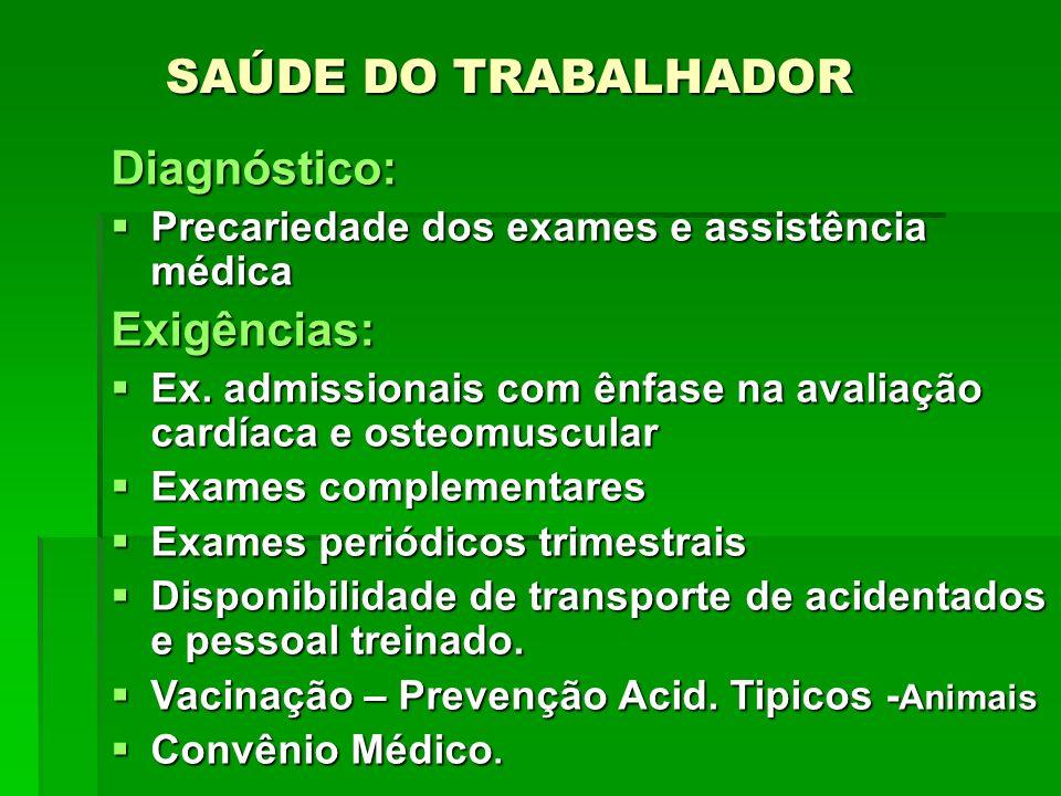 ALIMENTAÇÃO DO TRABALHADOR Diagnóstico: preparada pelos próprios trabalhadores migrantes em condições higiênicas e nutricionais precárias.
